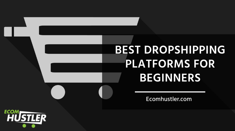 Dropshipping Platforms for Beginners